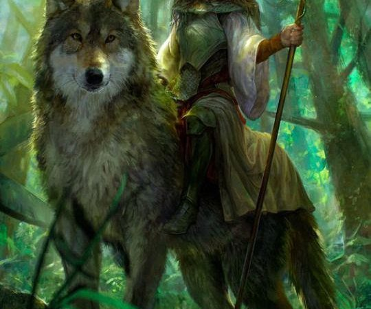 D&D 5e: Halfling Druid Guide