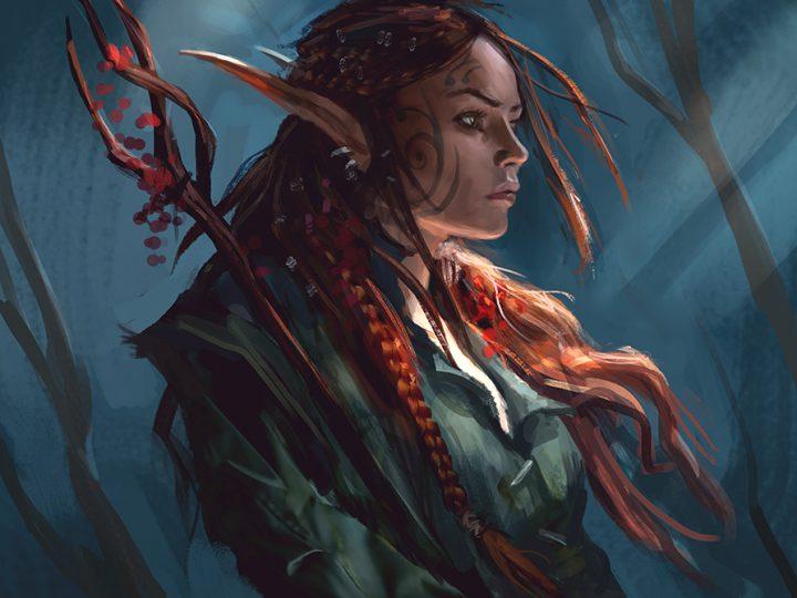 D&D 5e: Elf Druid Guide