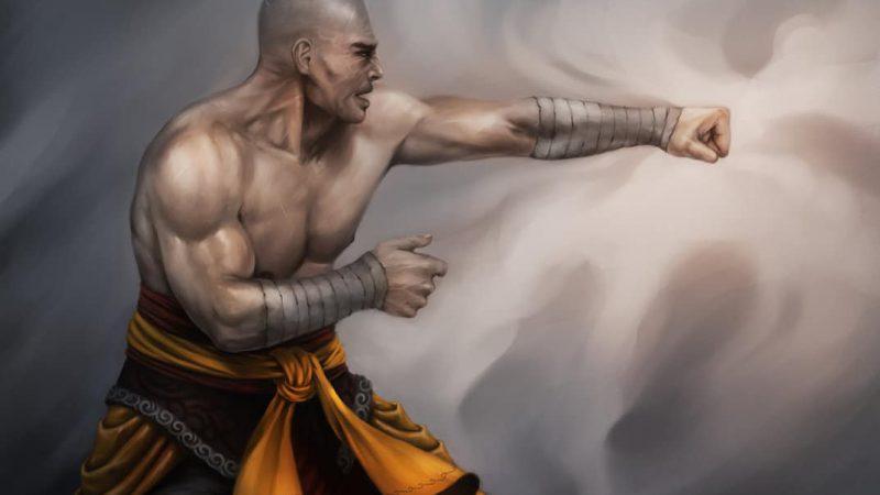 D&D 5e: Human Monk Guide