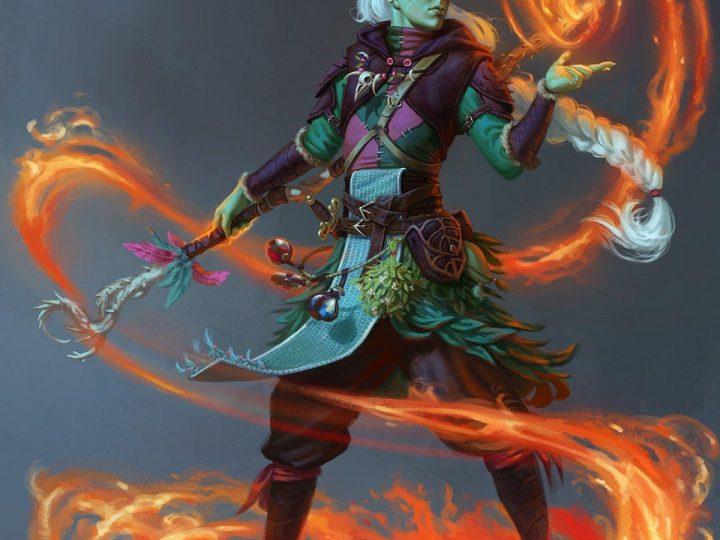 D&D 5e: Half-Elf Druid Guide