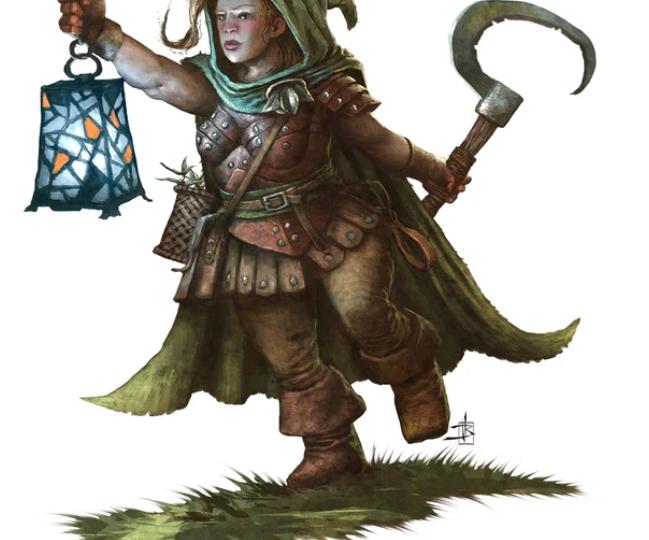 D&D 5e: Dwarf Druid Guide