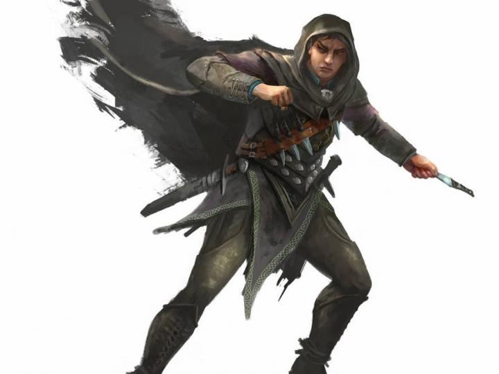 D&D 5e: Half-elf Rogue Guide