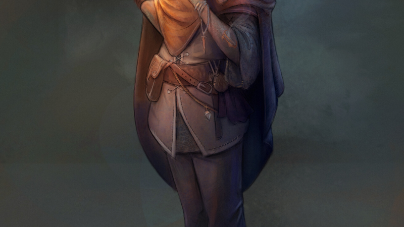 D&D 5e: Half-elf Sorcerer Guide